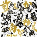 AKB48グループ「大組閣祭り」速報 乃木坂46生駒、SKE48木崎などの仰天人事も続々