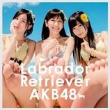 """AKB48渡辺麻友、""""ゲスまゆゆ""""に変貌?「私をどうしてくれんのよ!」"""