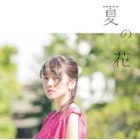 瀧川ありさ、2ndシングル『夏の花』をリリース&MV公開 MVは話題の新人俳優・板垣瑞生が出演