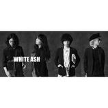 WHITE ASH、来春ニューアルバムリリース発表 「The Phantom Pain」「Ledger」MV解禁も