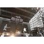 SPYAIR、野外ライブ『JUST LIKE THIS 2015』でアリーナツアー開催を発表