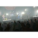 グッドモーニングアメリカが初武道館公演で見せた、「感謝」と「挑戦」のパフォーマンス