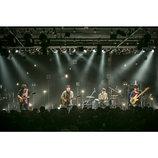 ALはバンドとして現在進行形で進化を遂げている アルバムリリース目前ライブを分析