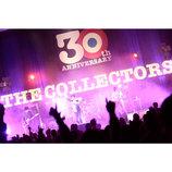 """THE COLLECTORSが体現する""""MOD&POP""""なロックンロール 武道館のバトン渡った30周年"""