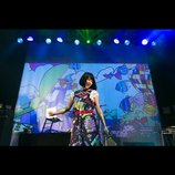 """""""2.5D""""というメディアが繋いだ越境的な音楽 主催イベント『GIRLS DON'T CRY vol.3』レポート"""