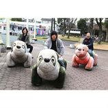 SHANK、地元・長崎で野外イベント『BLAZE UP NAGASAKI』今年も開催決定