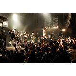 KEMURIがボーダーレスに届けるボジティブな熱 『SKA BRAVO 2016』東京公演レポ