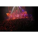東京スカパラダイスオーケストラが貫いてきた「日本人によるスカバンド」という軸
