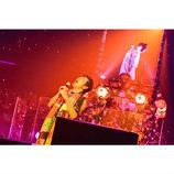 桑田佳祐は人生の陰影を美しく歌った 4年ぶりのソロ年越しライブ公演レポート