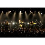 メトロノーム、新アルバム『CONTINUE』リリース&全国ツアー開催決定