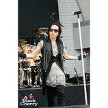 Acid Black Cherryの10年はライブから始まったーー2007〜2009年公演を振り返る