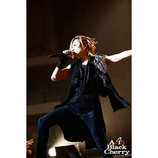 Acid Black Cherryのライブは進化し続けるーーファンと触れ合った2013年〜2015年を総括