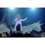 """Acid Black Cherryのライブに起こった""""変化""""ーー苦難と成長の2010〜2012年公演"""