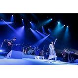 """パスピエはライブバンドとしての強さを得たーー""""音楽的DNA""""表現したツアー最終公演"""