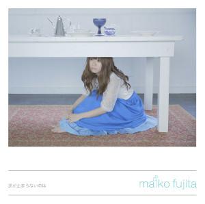 140428_fujita.jpg