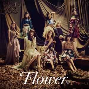 140930_flower_tsujo.jpg