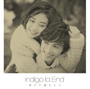 150210_indigo_j.JPG