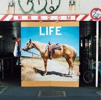 20140109-life-02.jpg