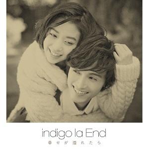 20141222-indigo.jpg