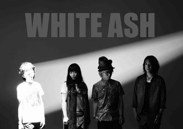 whiteashth_.jpg
