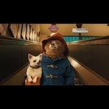 『パディントン』イメージソングにAI「ハピネス」起用決定 予告編映像も公開へ