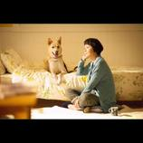 日本一有名なニート・pha『犬に名前をつける日』トークショー登壇「お金にならないものを大事に」