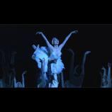 世界のトップで活躍する日本人バレエダンサーを追う 『Maiko ふたたびの白鳥』場面写真公開