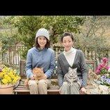 前田敦子と宮沢りえが共演果たす 『グーグーだって猫である』続編の追加キャスト発表