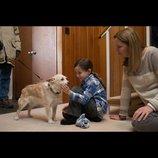 アカデミー賞主演女優賞受賞作『ルーム』、息子役ジェイコブ・トレンブレイの新場面写真公開
