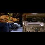 『ファンタスティック・ビースト』、トランクから逃げ出した魔法動物たちの映像&画像公開