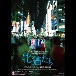 音尾琢真、とろサーモン、郭智博ら、白石和彌監督作『牝猫たち』追加キャストに