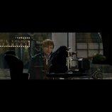 『ファンタビ』特別映像3パターン同時公開 愛くるしい魔法動物や迫力のアクションシーンも