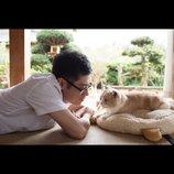 人気ゲームアプリを映画化『ねこあつめの家』公開へ 主演・伊藤淳史「未来を感じられる作品」
