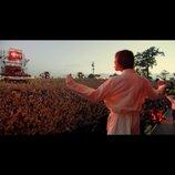 25万人の観客が熱狂、『オアシス:スーパーソニック』新場面写真 監督らのコメントも