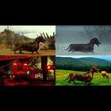 『トッド・ソロンズの子犬物語』インターミッション映像 アメリカ各地をさまようダックスフント
