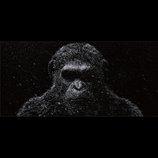 シリーズ最新作『猿の惑星:大戦記』特別映像 シーザー、人類へ警告メッセージを送る