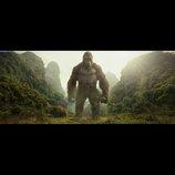 未知なる巨大生物たちの全貌が明らかに 『キングコング:髑髏島の巨神』場面写真公開