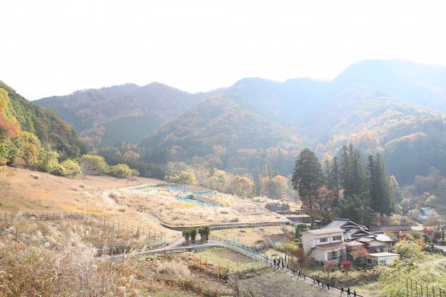 20160114-taiyou-sub9.JPG