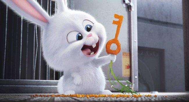 ペット ウサギのスノーボールのインタビュー公開 オレたちは人間