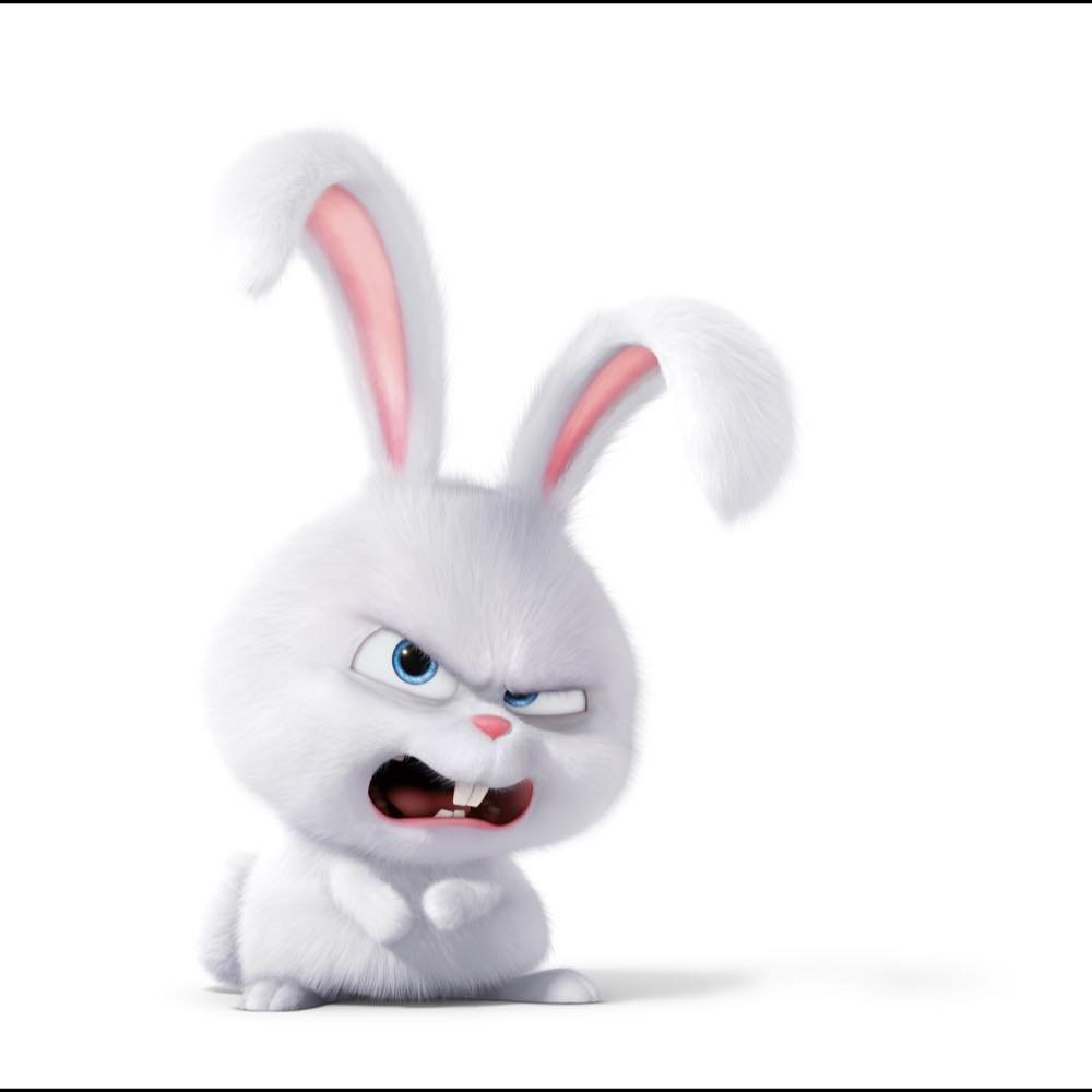 Secret Life Of Pets Snowball Angry