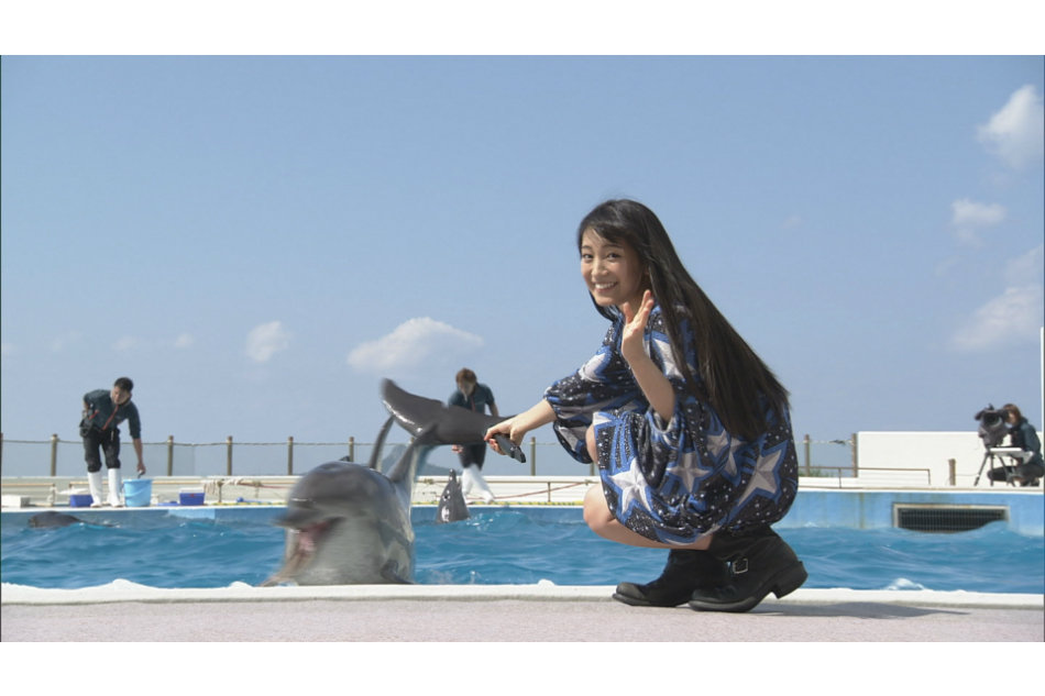 星柄のワンピース姿でイルカにタッチする歌手・miwa