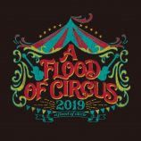 a flood of circle、ライブツアー『A FLOOD OF CIRCUS 大巡業2019』開催