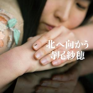 寺尾紗穂『北へ向かう』の画像