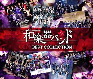 ベストアルバム『軌跡 BEST COLLECTION Ⅱ』(MUSIC VIDEO盤)の画像